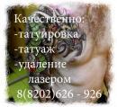 Студия татуировки  и перманентного макияжа, Череповец