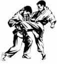 секция боевых искусств, Иваново
