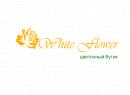 White Flower       Бесплатная доставка букетов по г. Алматы,оформление свадебных салонов живыми цветами.