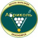 Абриколь Школа русского бильярда, Красноярск