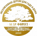 Кедр Форест, Балашиха