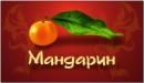 Мандарин, Россия