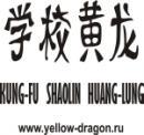 Желтый Дракон, Днепродзержинск