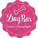 Интернет магазин Dog-Box, Санкт-Петербург