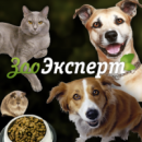 Интернет-магазин «ZooExpert24.ru»
