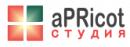 "PR-студия ""Apricot"", Саратов"