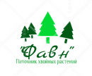 """Фавн"", Санкт-Петербург"