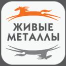 Живые металлы, Красноярск