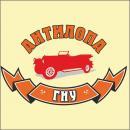 Антилопа Гну, автокомплекс, Риддер