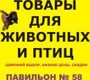 ИП АКУЛИНИЧ О.Л.