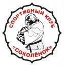 Детский спортивный клуб Соколёнок, Днепродзержинск