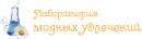 Интернет-магазин «Лаборатория модных увлечений»