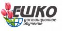 Курсы в Беларуси ЕШКО, Борисов