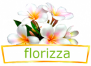 Интернет-магазин Florizza, Санкт-Петербург