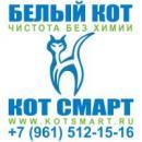 Кот Смарт - Белый кот, Кропоткин