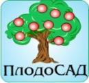 Интернет-магазин саженцев плодовых деревьев «ПлодоСАД», Россия