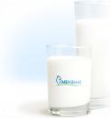 Milkiland LLC, Алматы