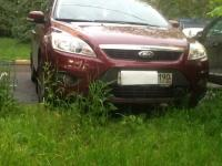 Ford Focus 2009 ВИШНЯ