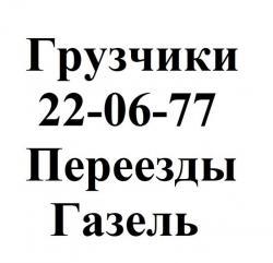 Бригада профессиональных Грузчиков 220-855