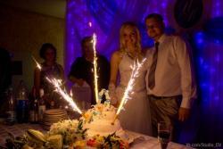 Тамада на свадьбу, ведущий,ди-джей - ЦЕНЫ СНИЖЕНЫ на свободные даты