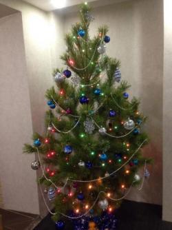Пышная новогодняя елка + бесплатная доставка