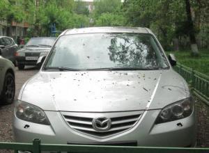 Mazda Mazda 3 2004